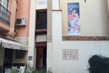 Revello de Toro Museum (Museo Revello de Toro)