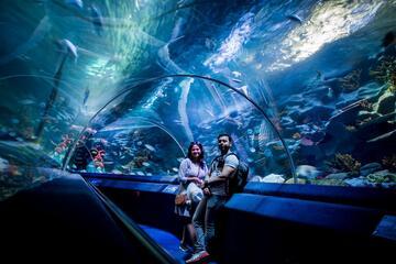 Istanbul Sea Life Aquarium