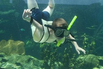 Parque Ocean World Adventure