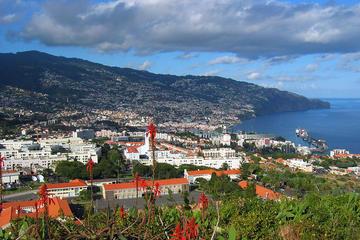Funchal Coast