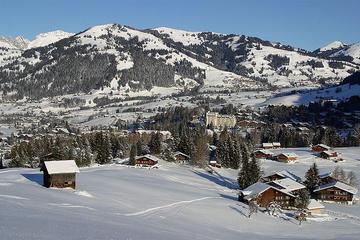 Swiss Alps Tours from Geneva