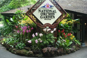 Singapore Botanical Garden & National Orchid Garden