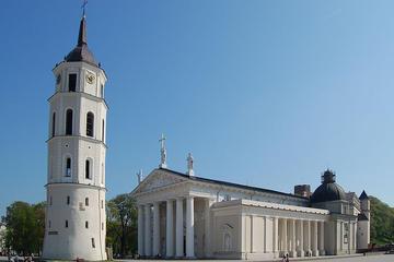 Vilnius Cathedral (Arkikatedra Bazilika)
