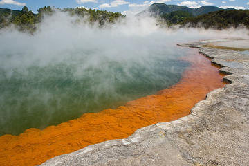 Rotorua Tours from Auckland