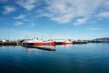 Reykjavik Cruise Port