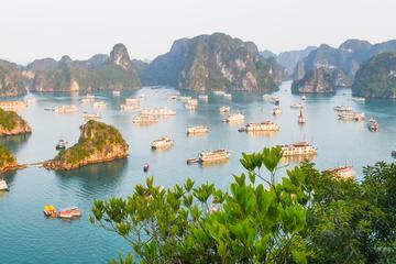 Halong Bay Cruise Options