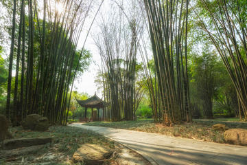 Wangjiang Tower Park & Tomb of Wang Jian