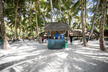 Dominican Republic Travel Advice >> Dominican Republic Travel Advice Recommendations Viator