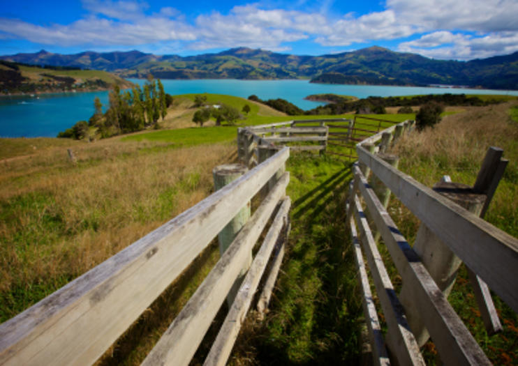 Akaroa Harbour - Christchurch