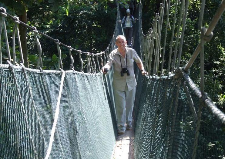 Regenwald und Canopy Walk