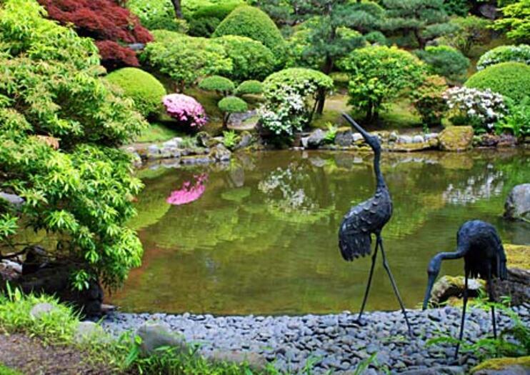 Jardin japonais activités 2019 - Viator