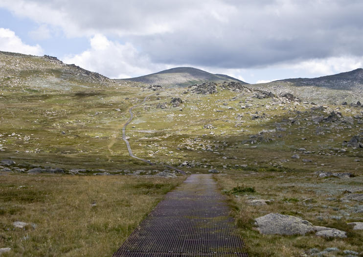 Mt. Kosciuszko National Park