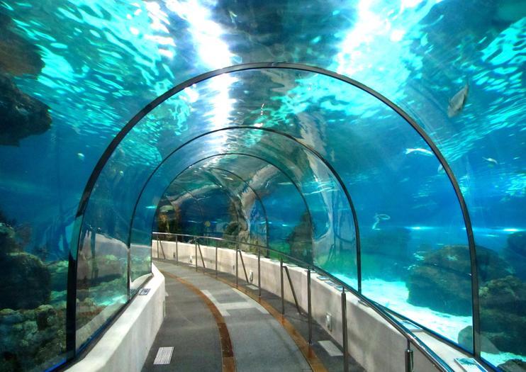 バルセロナ水族館 (L'Aquarium)