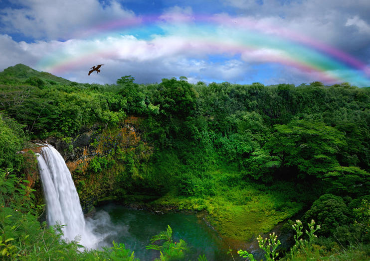 Each Of The Hawaiian Islands Has Its Own Distinct Landscape And Feel Kauai S Lush Greenery Waterfalls Have Earned It Nickname Garden