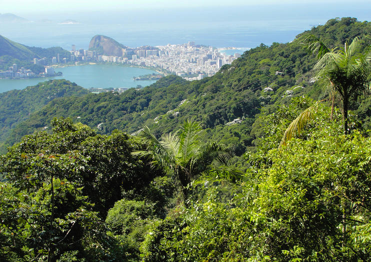 Tijuca Nationalpark