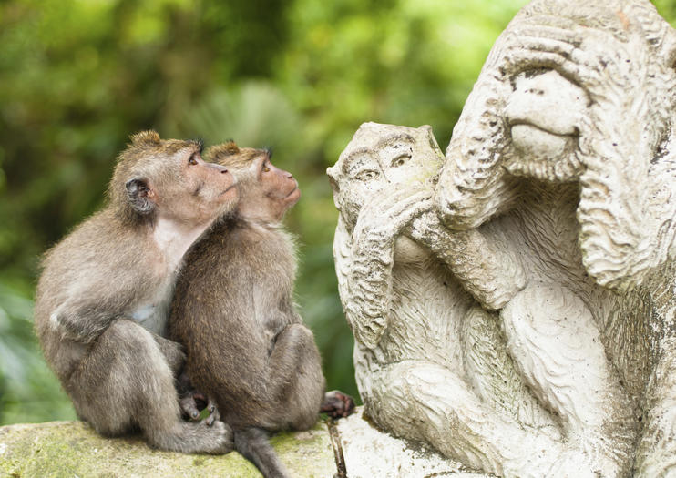 Ubud Monkey Forest (Sacred Monkey Forest Sanctuary)
