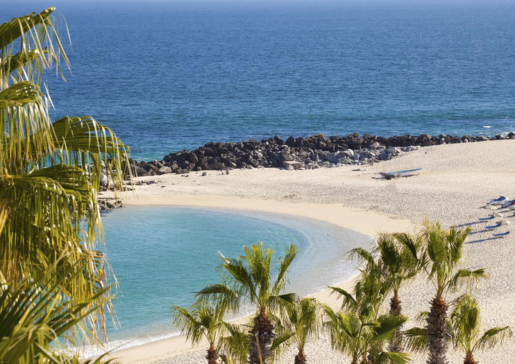 Palmilla Beach Playa Tours
