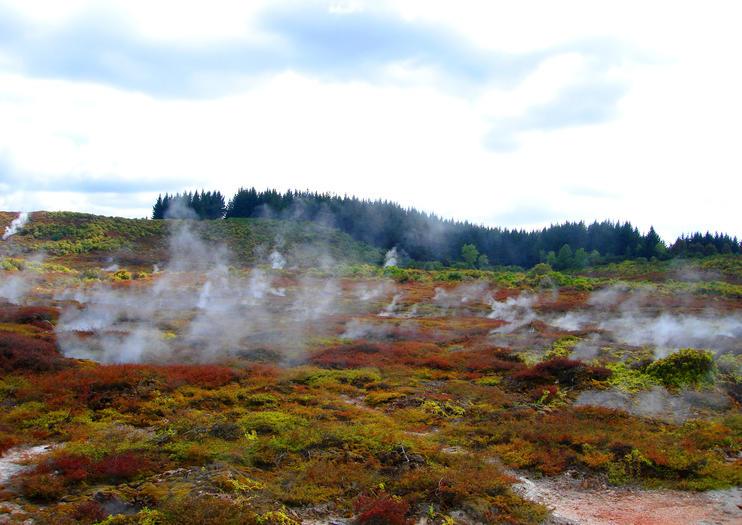 Valle termal natural de Wairakei