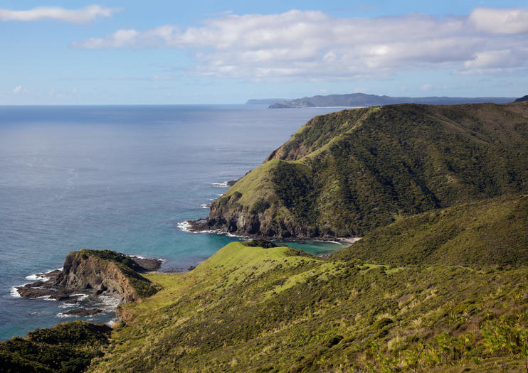 Cape Reinga - Bay of Islands