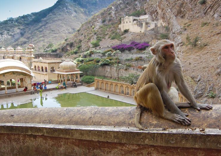 Sacred Sights in Jaipur