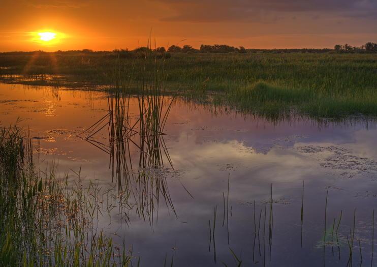 3 dias no Parque Nacional Everglades: Sugestão de Itinerários