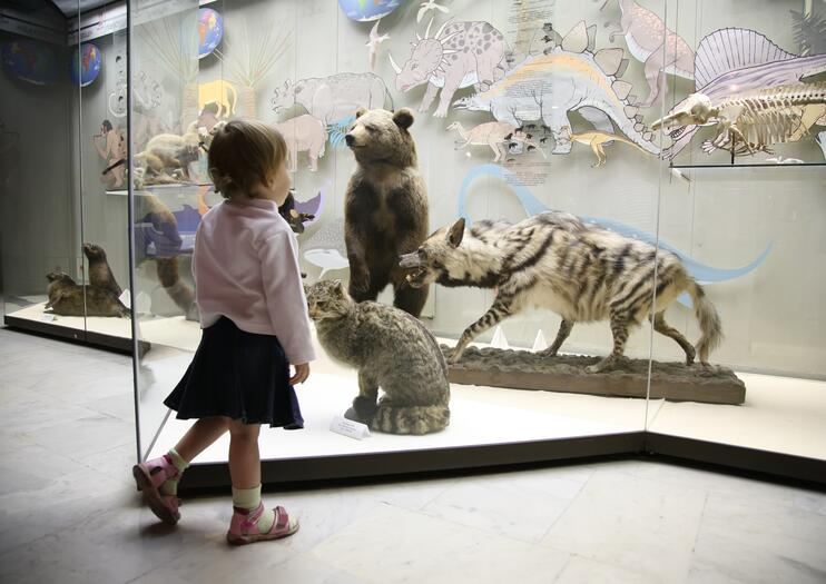 Western Australian Museum – Perth