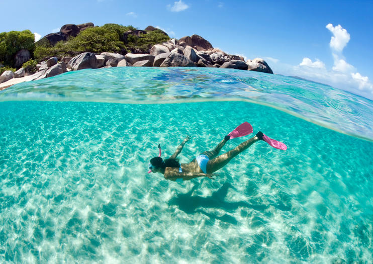 Top Snorkeling and Scuba Diving Spots in Turks and Caicos