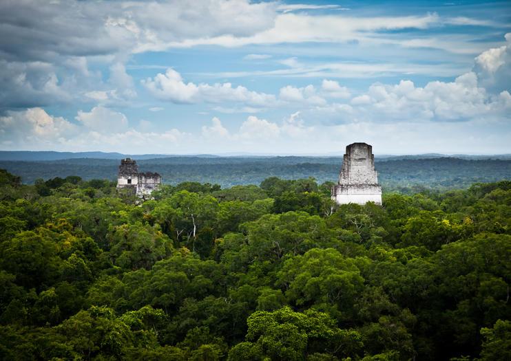 Maya Biosphere Reserve (Reserva de la Biosfera Maya)