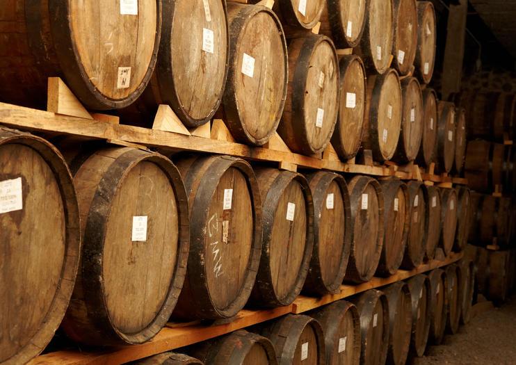 Jose Cuervo Distillery (Fábrica La Rojeña)