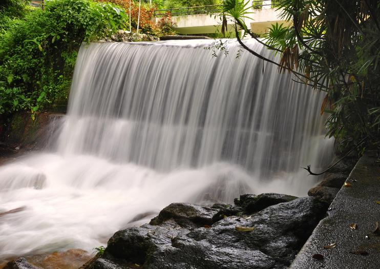 Penang Botanical Gardens (Taman Botani Penang)