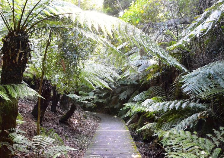 Jardins Botaniques de Darwin