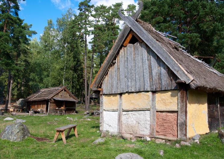 Gothenburg Viking History