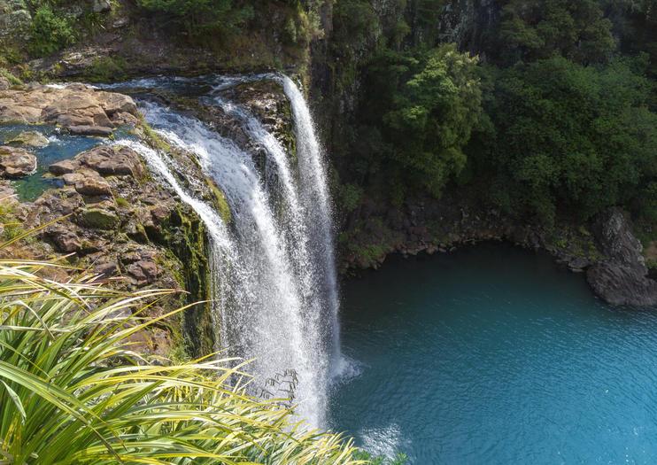 Whangarei Wasserfall