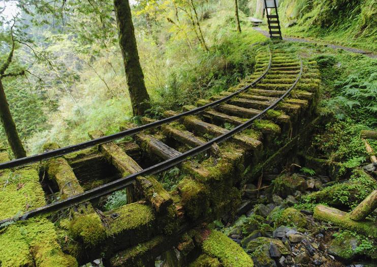 Taipingshan Waldgebiet