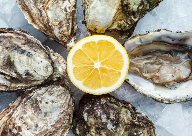 Arcachon Oyster Tastings in Bordeaux
