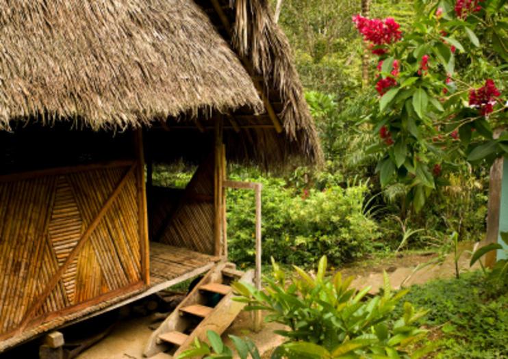 Overnight Amazon Jungle Lodge Stays from Puerto Maldonado