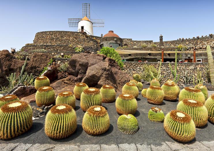 Kaktusgarten (Jardín de Cactus)