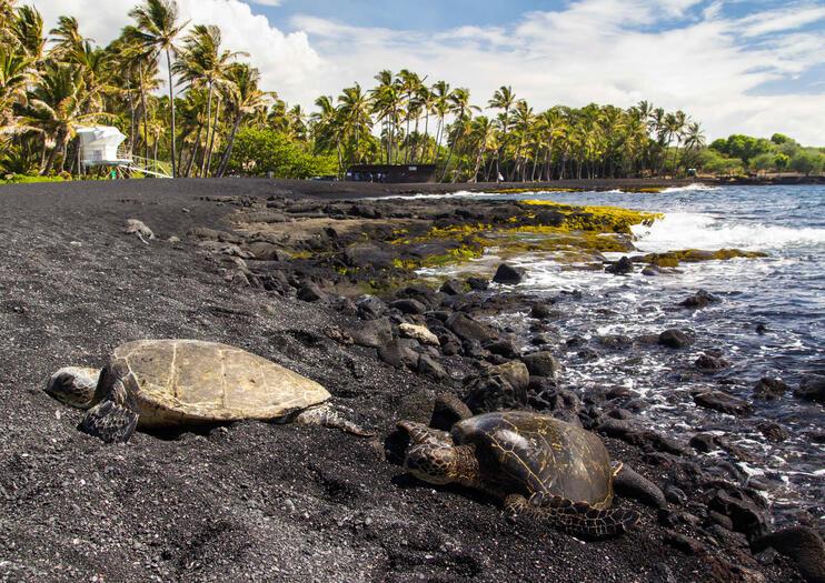 Playa de Arena Negra Punalu'u