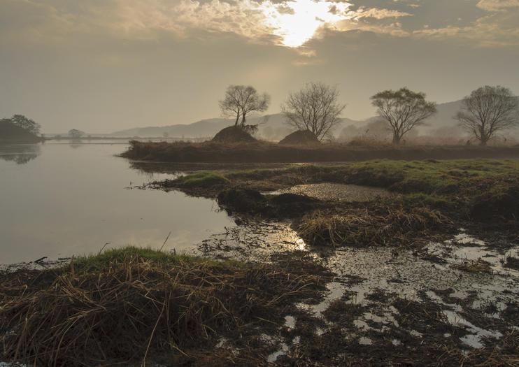 Pantanal de Junam