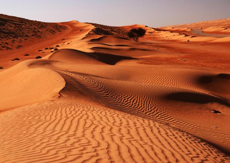 Wahiba Sands (Sharqiyah Sands)