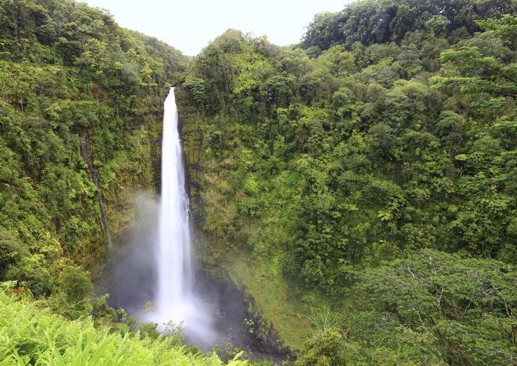 Cataratas Akaka (Akaka Falls)