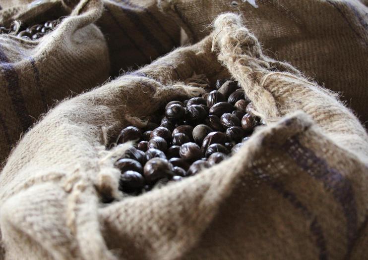 De La Grenade Nutmeg Garden