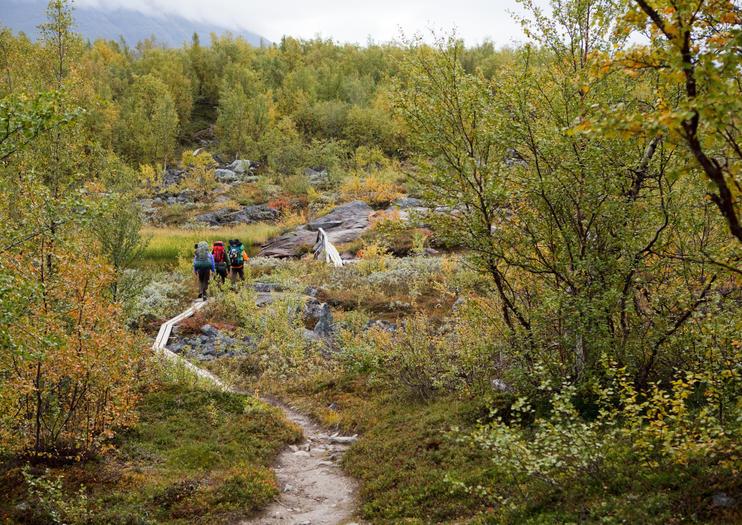 Parque Nacional de Pyhä-Luosto