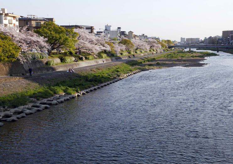 Rivière Kamo