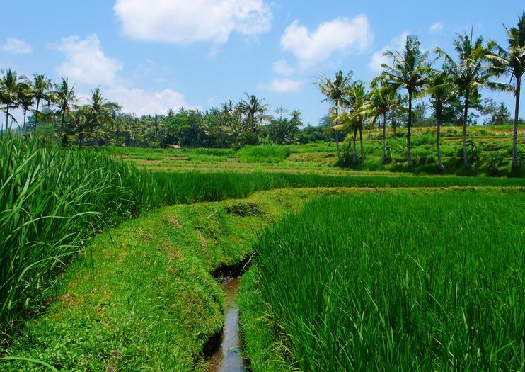 Blahbatuh Village
