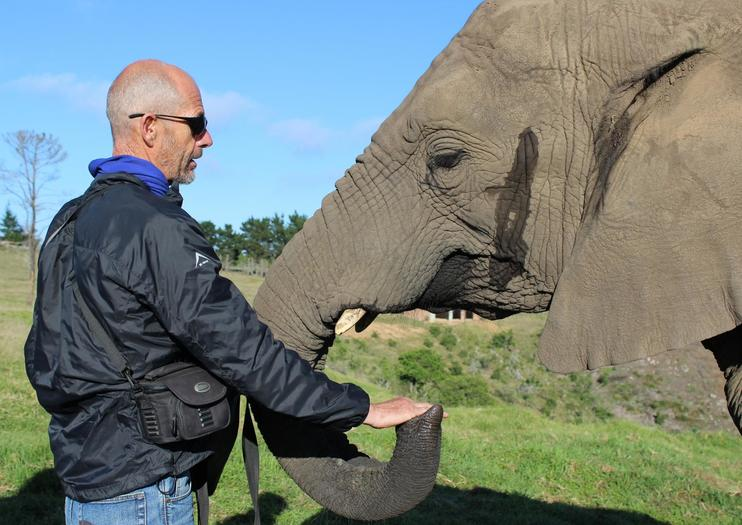 Where to See Wildlife on the Garden Route