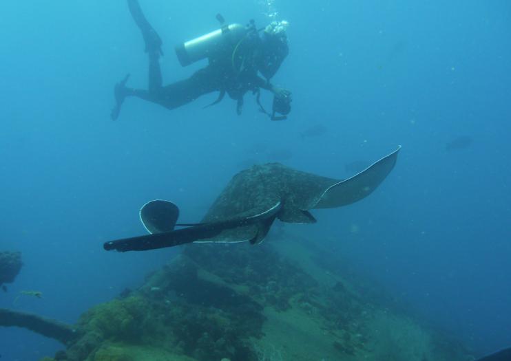 SS Yongala Dive Site