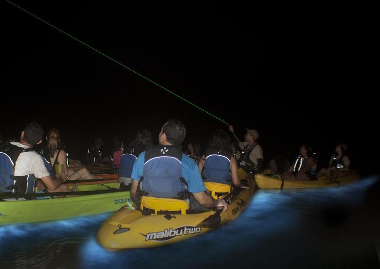 La baie bioluminescente