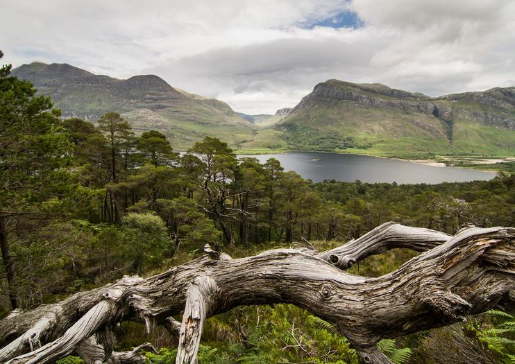 Réserve naturelle nationale de Beinn Eighe