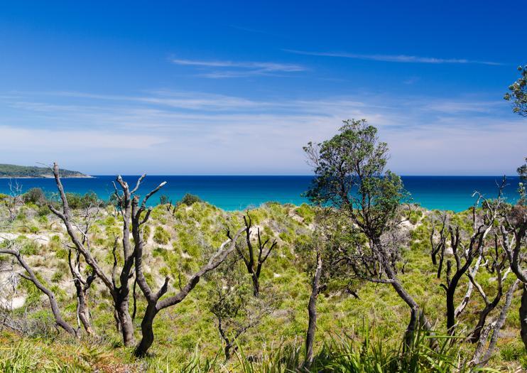 Jervis Bay National Park